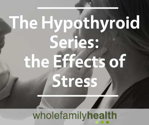 Hypothyroid Series Banner Image