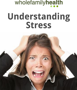 Understanding Stress Image - Whole Family Health